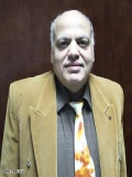 مصطفى الفولى